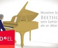 Von Beethoven bis zu den Elefanten: Wie Knochenleitung der Welt zum Hören verhilft