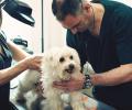 Un veterinario con Implantes Cocleares Bilaterales